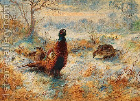 Frost at Sunrise Pheasant amongst bracken by Archibald Thorburn - Reproduction Oil Painting