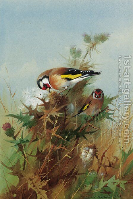 Goldfinches on thistledown by Archibald Thorburn - Reproduction Oil Painting