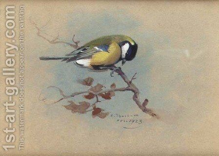 Great Tit by Archibald Thorburn - Reproduction Oil Painting