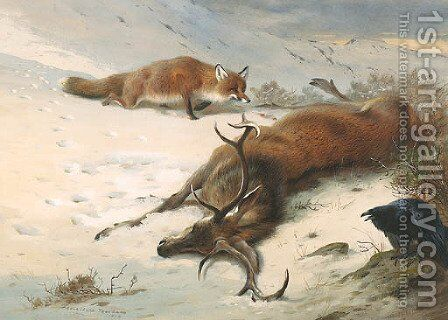 The Fox, the Raven and the dead Stag by Archibald Thorburn - Reproduction Oil Painting
