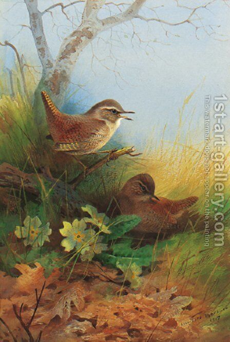 Two wrens amongst primroses by Archibald Thorburn - Reproduction Oil Painting