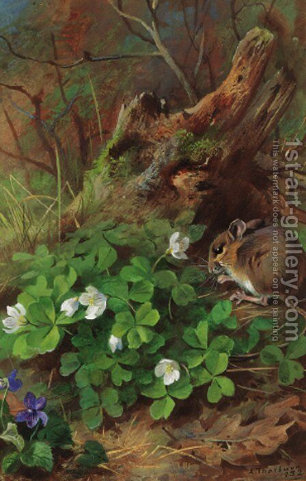 Woodmouse and wood sorrel by Archibald Thorburn - Reproduction Oil Painting
