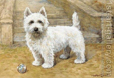 A westie by A.C. (after) Cooke - Reproduction Oil Painting