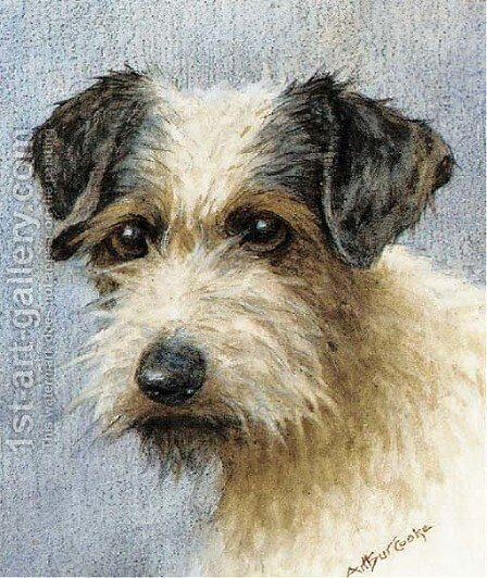 A wire haired terrier by A.C. (after) Cooke - Reproduction Oil Painting
