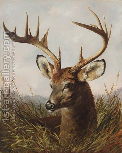 The Stag by Arthur Fitzwilliam Tait - Reproduction Oil Painting