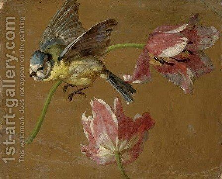 A study of two tulips and a bluebird by (after) Alexandre-Francois Desportes Champigneule - Reproduction Oil Painting