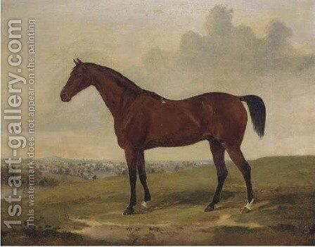 Bloomsbury, a bay racehorse by (after) David Of York Dalby - Reproduction Oil Painting