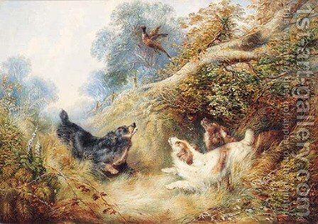 Spaniels flushing out a Pheasant by (after) George Armfield - Reproduction Oil Painting