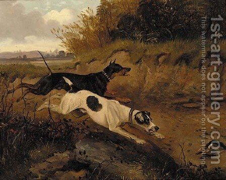 A doberman pinscher and a great dane chasing a rabbit by (after) George Armfield - Reproduction Oil Painting