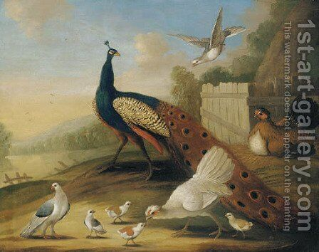 A peacock, doves and chickens in a wooded river landscape by (after) Marmaduke Cradock - Reproduction Oil Painting