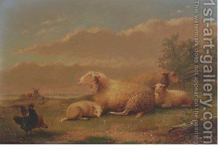 Sheep resting in a meadow by Auguste Coomans - Reproduction Oil Painting