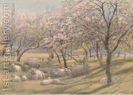 Sheep resting in the shade of an apple orchard by Augustus Watford Weedon - Reproduction Oil Painting