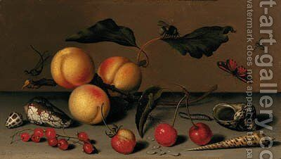 Apricots on a stalk, cherries, a wild strawberry, redcurrants, shells, a butterfly, a bee, a spider, a fly, a caterpillar and a dragonfly on a ledge by Balthasar Van Der Ast - Reproduction Oil Painting