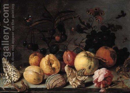 Fruit and shells, with butterflies, a dragonfly, a lizard, a snail and a fly on a stone ledge by Balthasar Van Der Ast - Reproduction Oil Painting