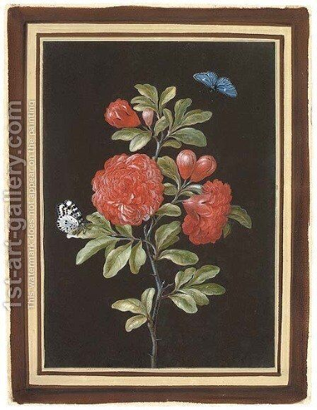 Still life with a rose and two butterflies by Barbara Regina Dietzsch - Reproduction Oil Painting
