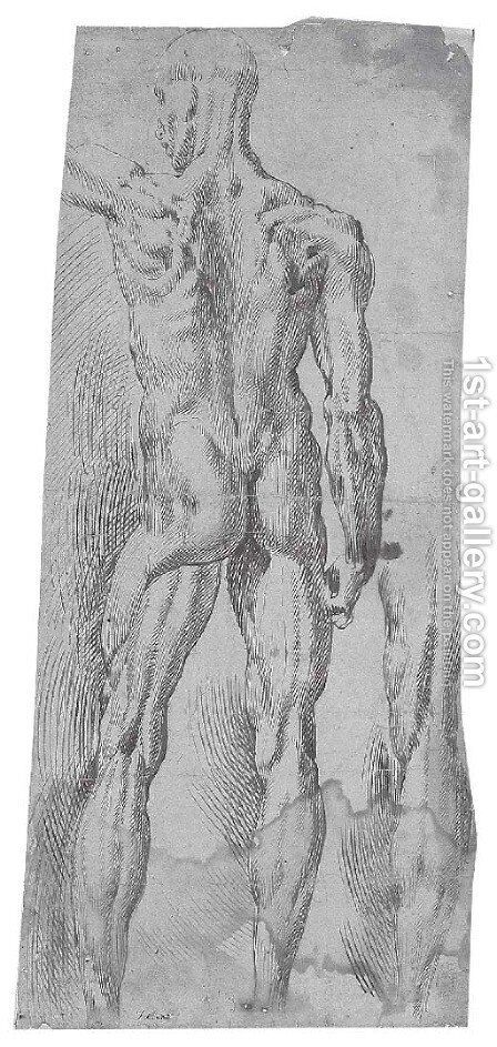 An ecorche nude seen from behind, with a subsidiary study of the right leg by Bartolomeo Passarotti - Reproduction Oil Painting