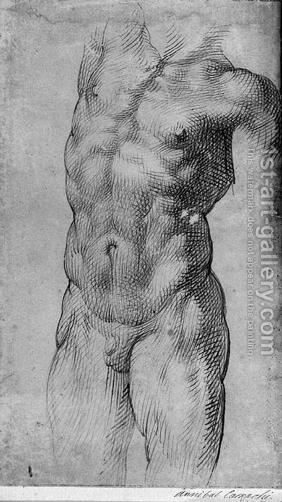 Study for a torso by Bartolomeo Passerotti - Reproduction Oil Painting