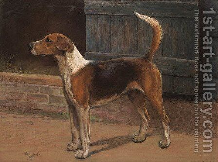 Stormer by Cecil Charles Aldin - Reproduction Oil Painting