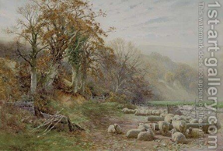 Sheep resting in the sunshine by Charles James Adams - Reproduction Oil Painting
