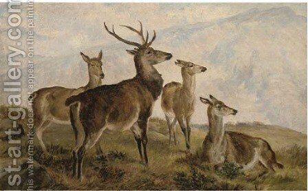 Deer in the highlands by Charles Jones - Reproduction Oil Painting