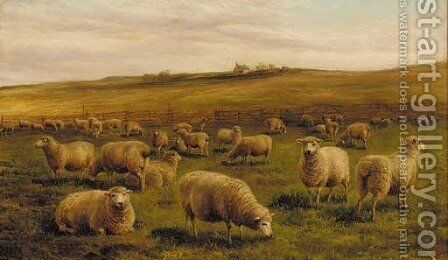 Sheep grazing with a cottage beyond by Charles Jones - Reproduction Oil Painting