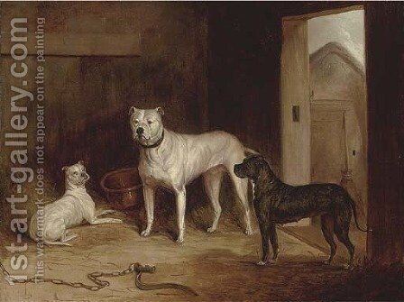 A bulldog and bullterriers in an outhouse by (after) Cooper, Abraham - Reproduction Oil Painting