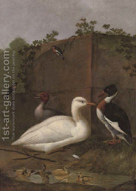 A duck by (after) Aert Schouman - Reproduction Oil Painting