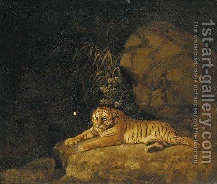 Portrait of the Royal Tiger by (after) Stubbs, George - Reproduction Oil Painting