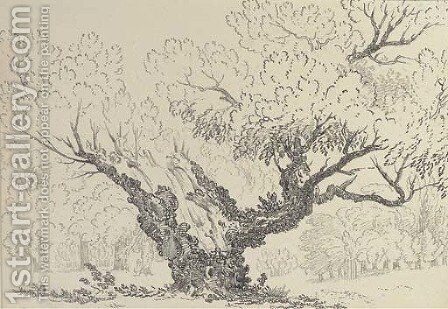 Study of an oak tree, Hyde Park by (after) John Claude Nattes - Reproduction Oil Painting