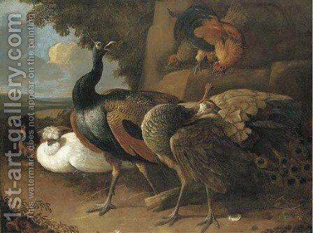 A peacock, a peahen, poultry and other birds in a rocky landscape by (attr. to) Hondecoeter, Melchior de - Reproduction Oil Painting
