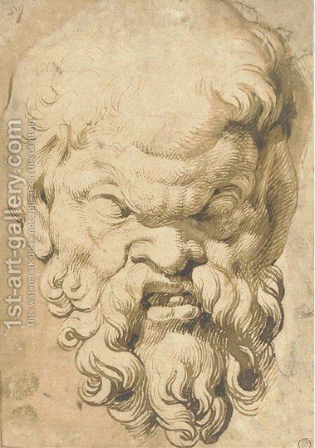 Head of a Satyr by (after) Rubens, Peter Paul - Reproduction Oil Painting