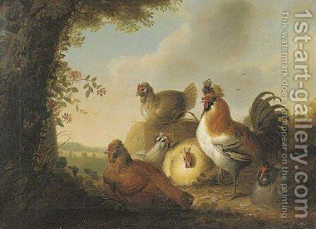 A cockerel and chickens in a wooded landscape by (after) Philip Reinagle - Reproduction Oil Painting