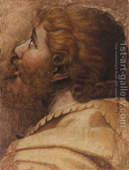 Head of a man looking up to the left a cartoon for a tapestry by (after) Raphael (Raffaello Sanzio of Urbino) - Reproduction Oil Painting