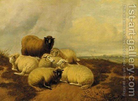 Sheep resting in a meadow 3 by (after) Thomas Sidney Cooper - Reproduction Oil Painting