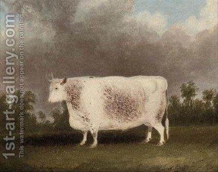 A white prize bull by (after) Thomas Weaver - Reproduction Oil Painting