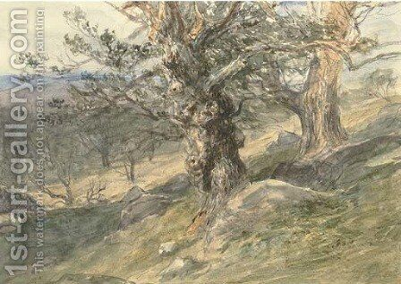 Gnarled oaks in Bolton Park, Yorkshire by David Cox - Reproduction Oil Painting