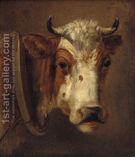 Study of a cow's head by Dirk Van Lokhorst - Reproduction Oil Painting