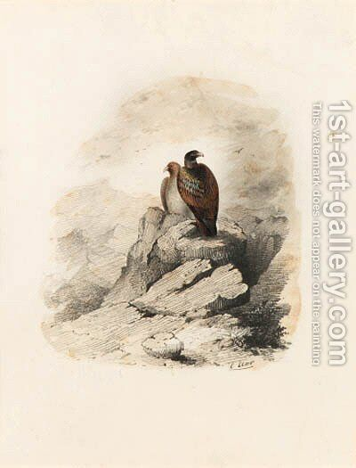 A pair of birds of prey on a rocky outcrop by Edward Lear - Reproduction Oil Painting