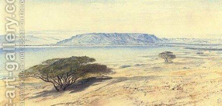 The southern end of the Dead Sea by Edward Lear - Reproduction Oil Painting