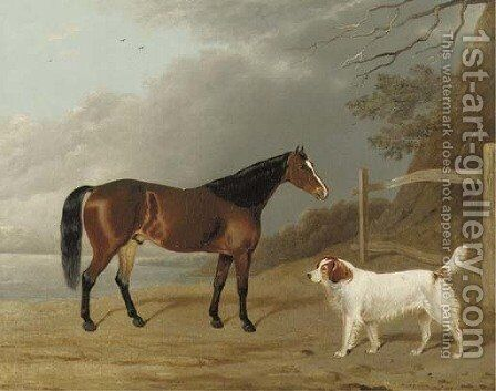 A Bay hunter with a dog by a fence by Edwin Cooper - Reproduction Oil Painting