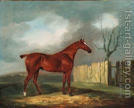 A chestnut Hunter by a Fence in an extensive Landscape by Edwin Cooper - Reproduction Oil Painting