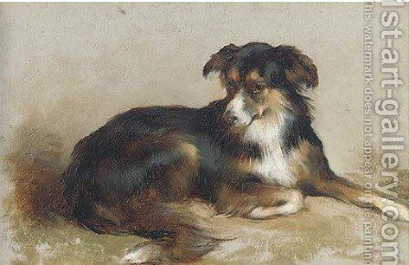 A collie by Edwin Douglas - Reproduction Oil Painting