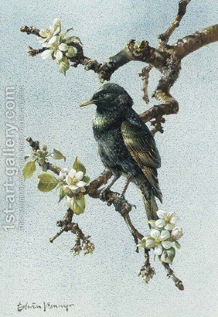 A starling by Edward Penny - Reproduction Oil Painting