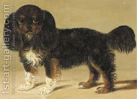 A King Charles spaniel by English Provincial School - Reproduction Oil Painting