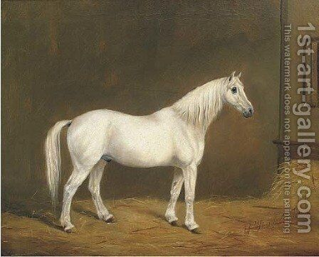 Mr Upright's Jack, a grey horse in a stable by English Provincial School - Reproduction Oil Painting