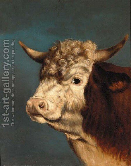 The head of a prize bull by English Provincial School - Reproduction Oil Painting
