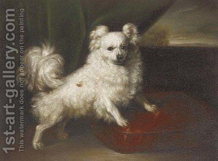 A pomeranian on a red cushion by English School - Reproduction Oil Painting