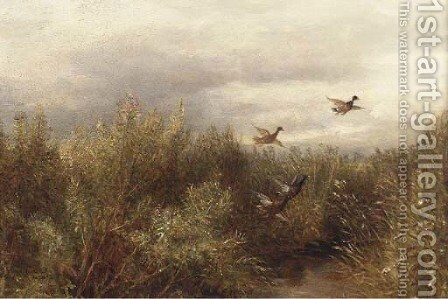 Ducks over a marsh by English School - Reproduction Oil Painting