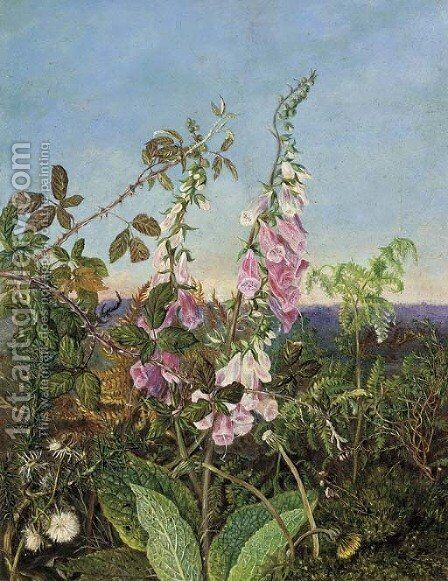 A summer hedgerow by (after) Albert Durer Lucas - Reproduction Oil Painting