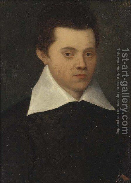 Portrait of a gentleman by (after) Francesco De' Rossi (see Salviati, Cecchino Del) - Reproduction Oil Painting